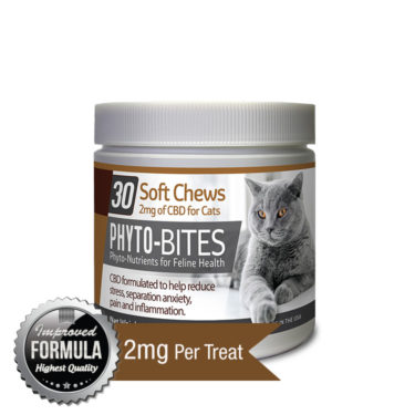 CBD Soft Chews For Cats