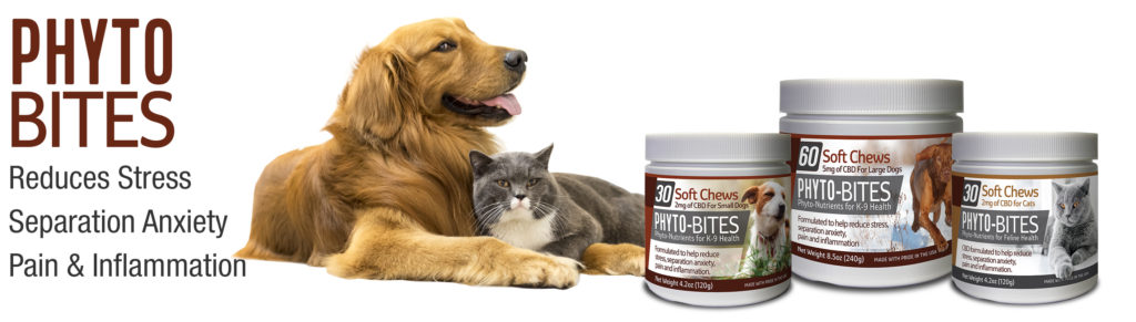 Phyto-bites_CBD_soft_chews for pets