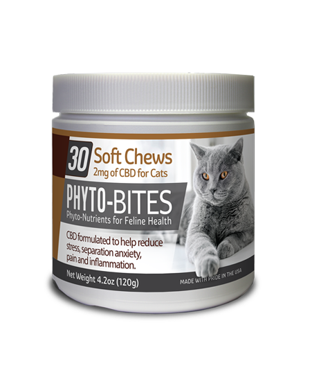 CBD Soft Chews for your cat